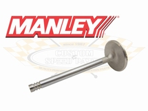 Manley klep type 4